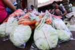 Harga Sayuran di Pudak Kembali Normal Karena BPNT